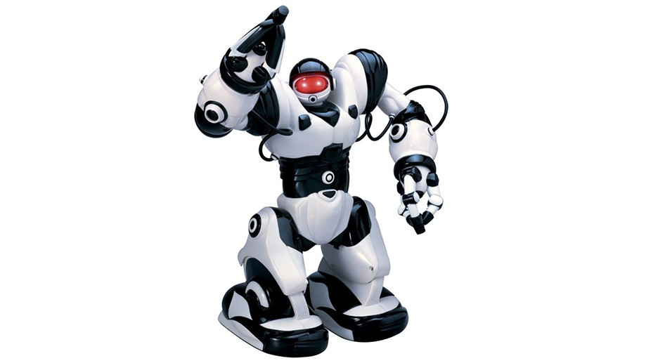 Toy robots for adults